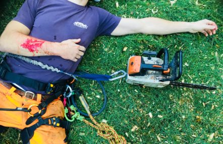Forestry First Aid training - In Safe Hands training